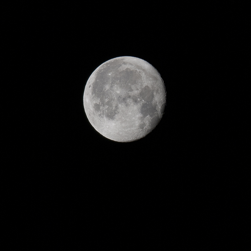 Woke up early; watched the moon set.